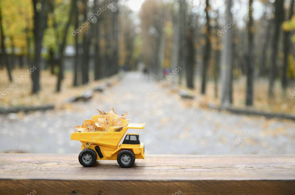 A small toy yellow truck is loaded with yellow fallen leaves. The car stands on a wooden surface against a background of a blurry autumn park. Cleaning and removal of fallen leaves. Seasonal works