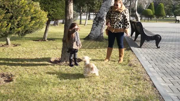 Lassú mozgás anya és gyermeke egy meleg nyári napon a kutyát a parkban játszó