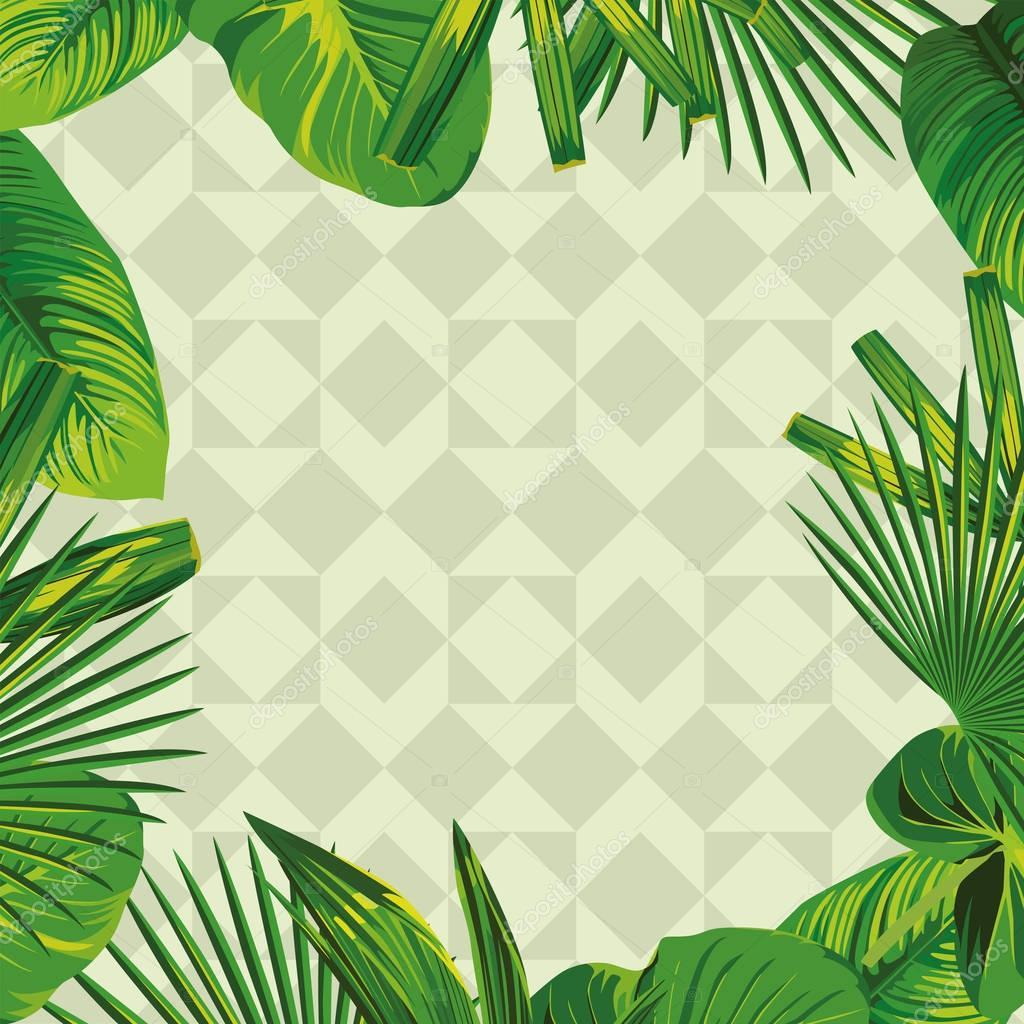 frame of a tropical leaf