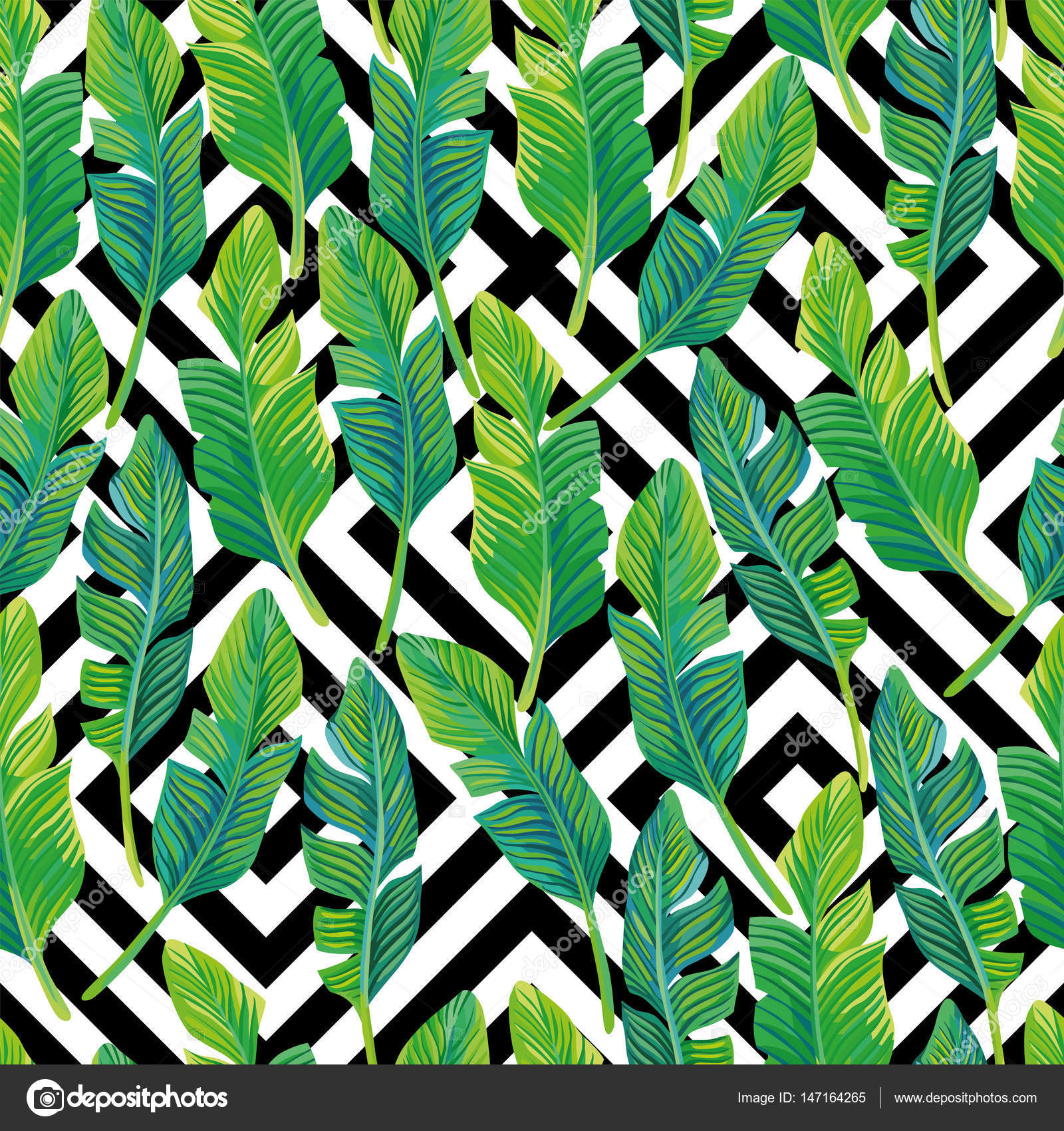 Palm Leaves Seamless Pattern Black White Geometric Background Stock Vector
