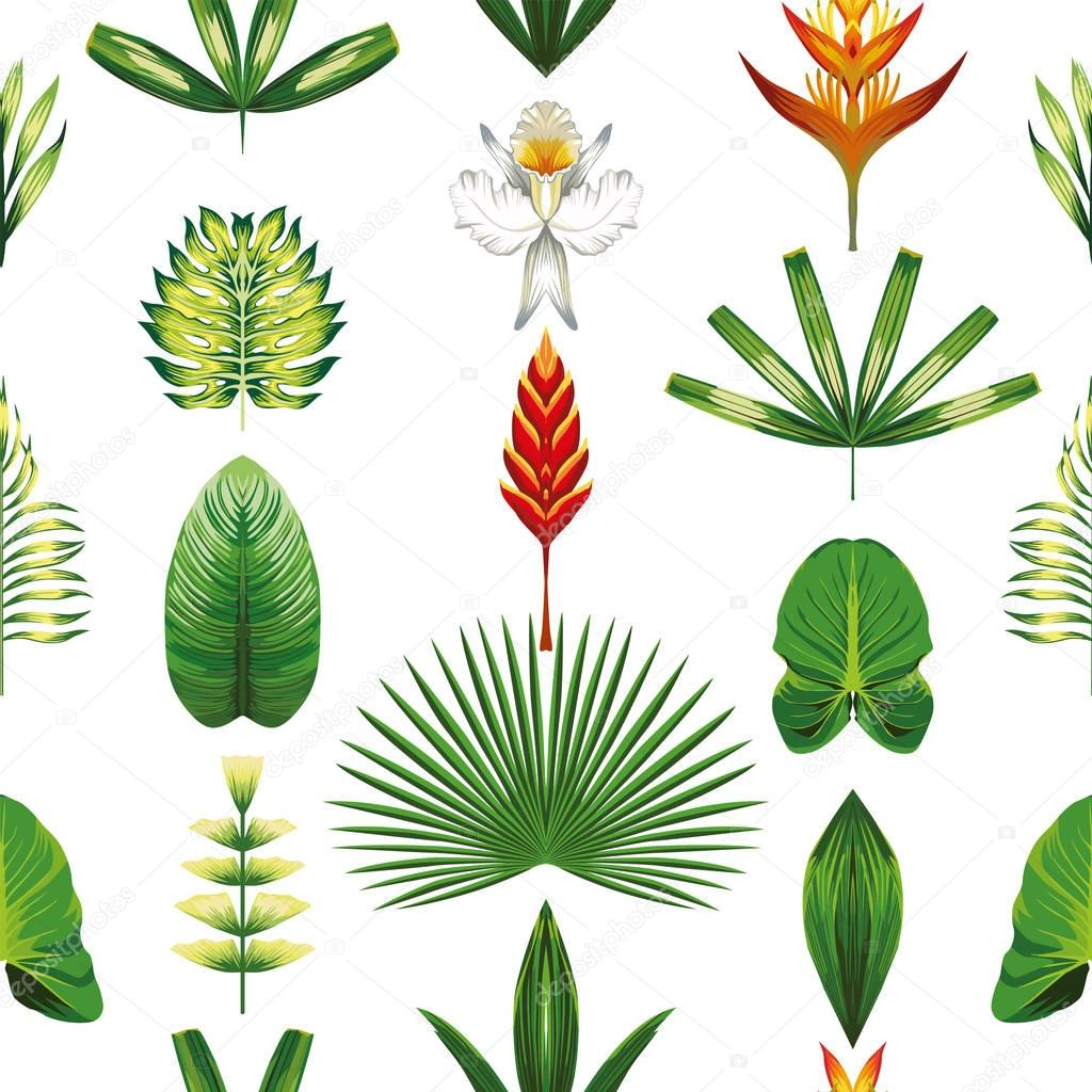 Seamless symmetric tropical flowers and leaves white background