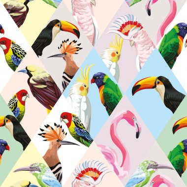 Exotic beach trendy seamless pattern, patchwork illustrated tropical birds vector. Jungle parrots, pink flamingo, toucan Wallpaper print tropic background mosaic clip art vector