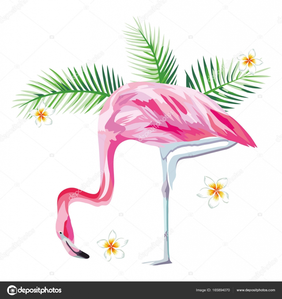 cf0357697 Vector: flor playa | Flamenco rosado con tropical de plantas y ...
