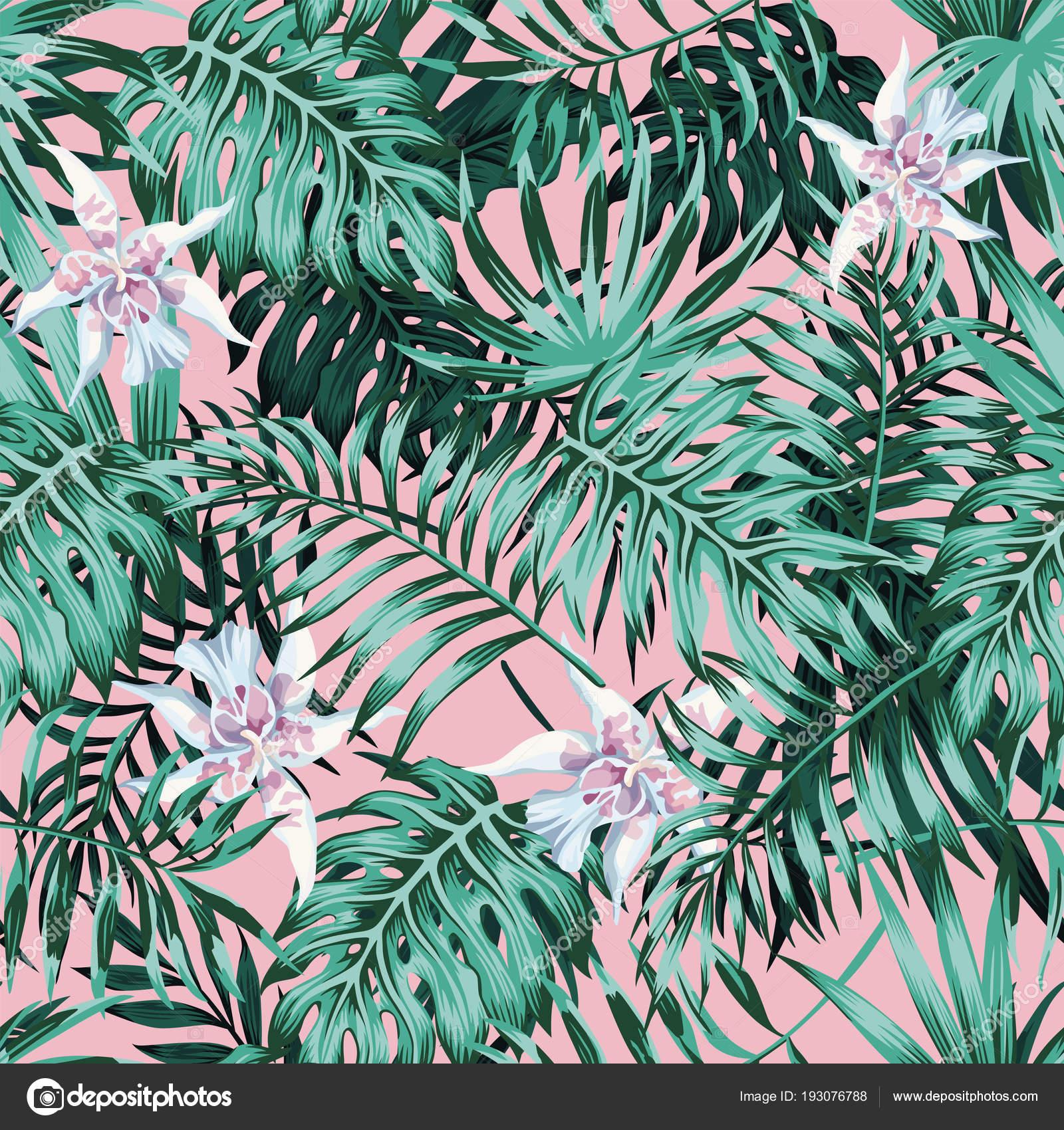 Palm Leaves Pink Background Pattern Stock Vector C Berry2046 193076788 Tropical leaves on pink background. https depositphotos com 193076788 stock illustration palm leaves pink background pattern html