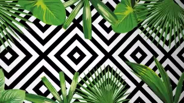 Exotic jungle green plant tropical palm banana leaves. Pattern floral vector animation on the black white geometric background. Nature border motion video wallpaper.