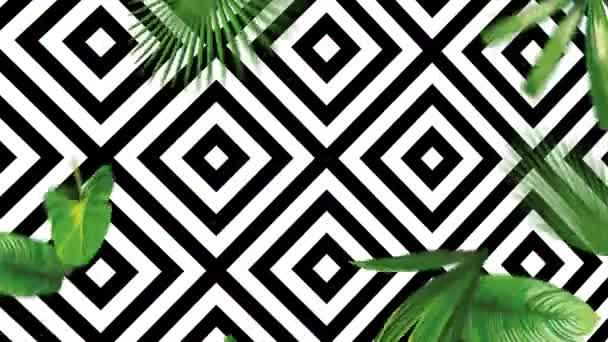 Zuhanó zöld trópusi levelek geometriai fekete-fehér háttérrel. Egzotikus botanikai 4k animáció reális vektor kézzel rajzolt tárgyak mozgásban
