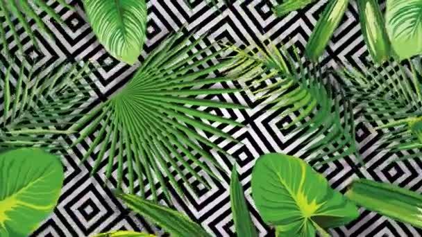 Realistische tropische grüne Blätter, die herangezoomt werden. Schöne 3D-Animation Natur Vektor Laub mit schwarz weißen geometrischen Hintergrund Close up 4K. Exotisches Filmmaterial