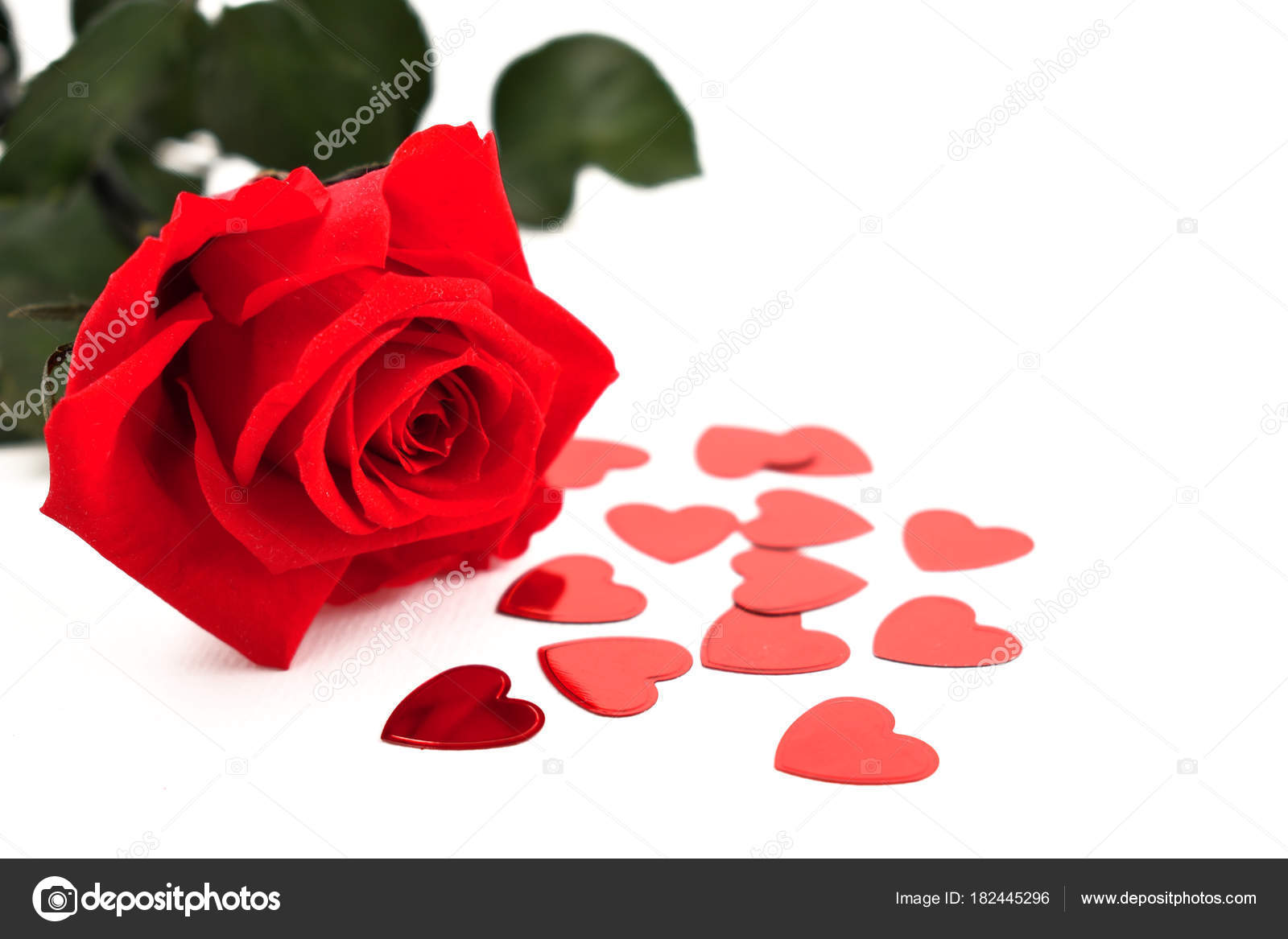 Red Rose Hearts Stock Images Romantic Roses White Background
