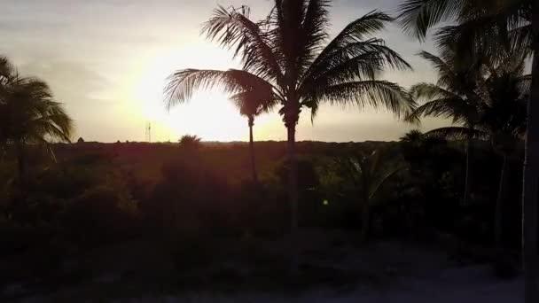 Letecký dron zastřelen. Kamera pomalu letí nad kokosové palmy. Krásný západ slunce na pobřeží Karibského moře. Riviera Maya, Quintana Roo, Mexiko