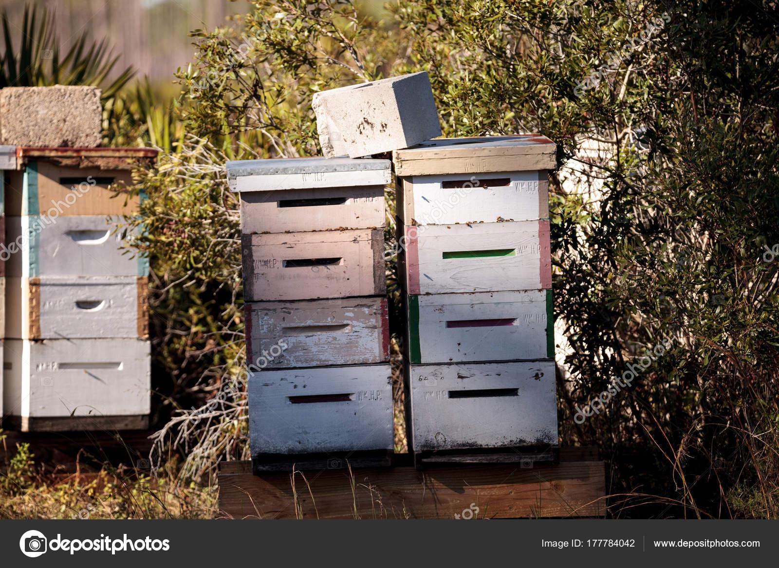 Stapel von Langstroth Bienenstöcke mit Honigbienen fliegen ...