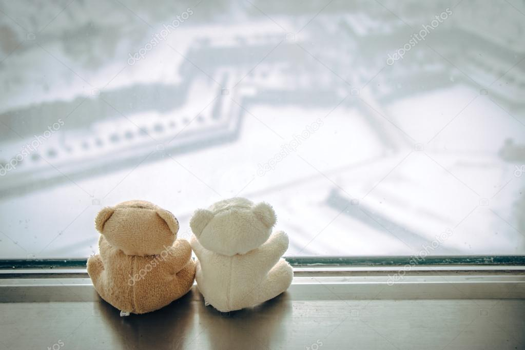 Lovely couple bear sit together near window