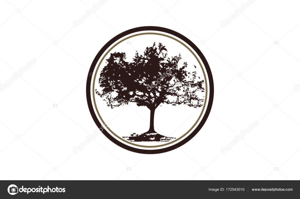 Oak Tree Logo Design Template Vector Stock