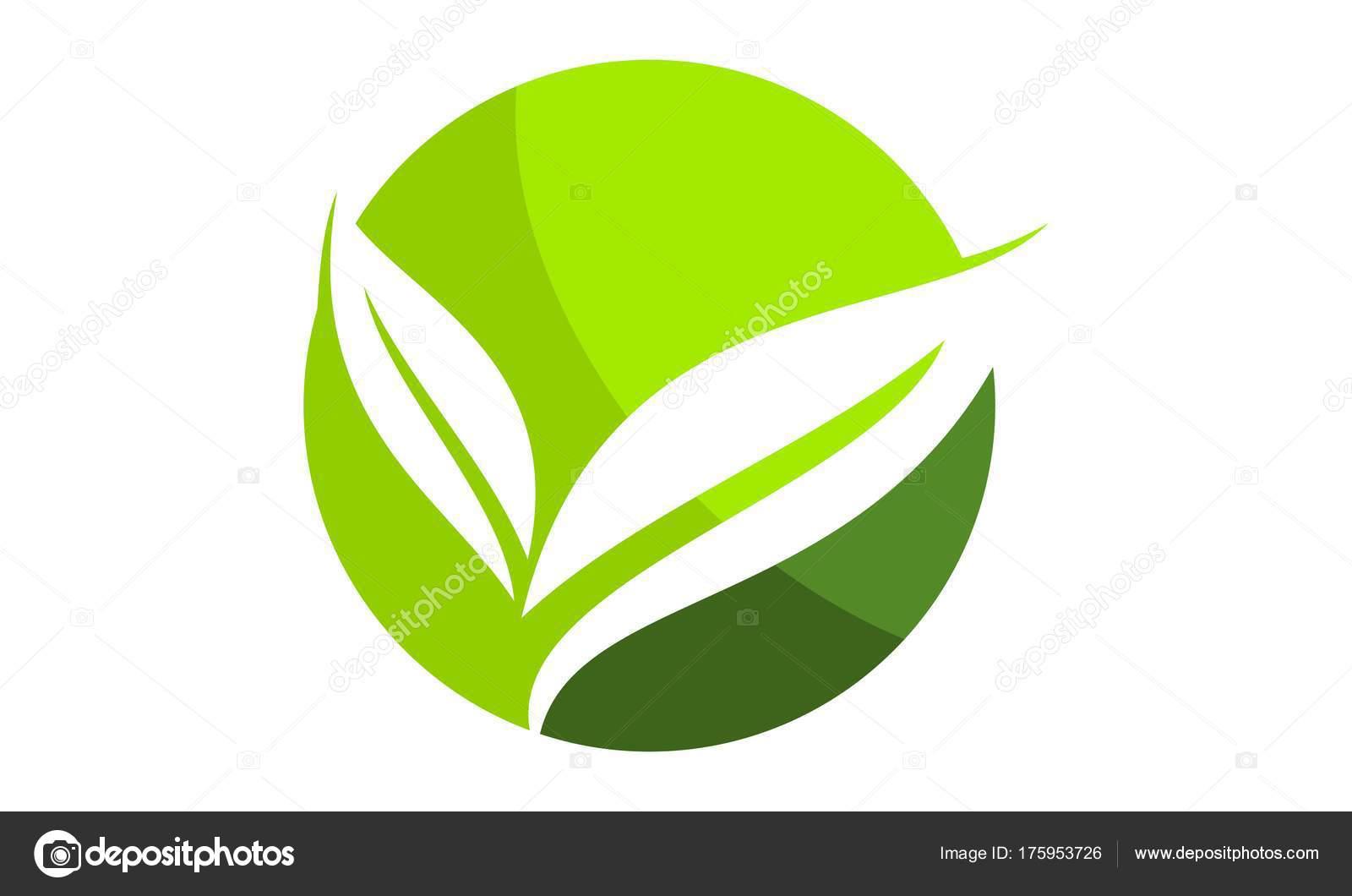 Vector de plantilla de hoja verde logotipo diseño — Vector de ...