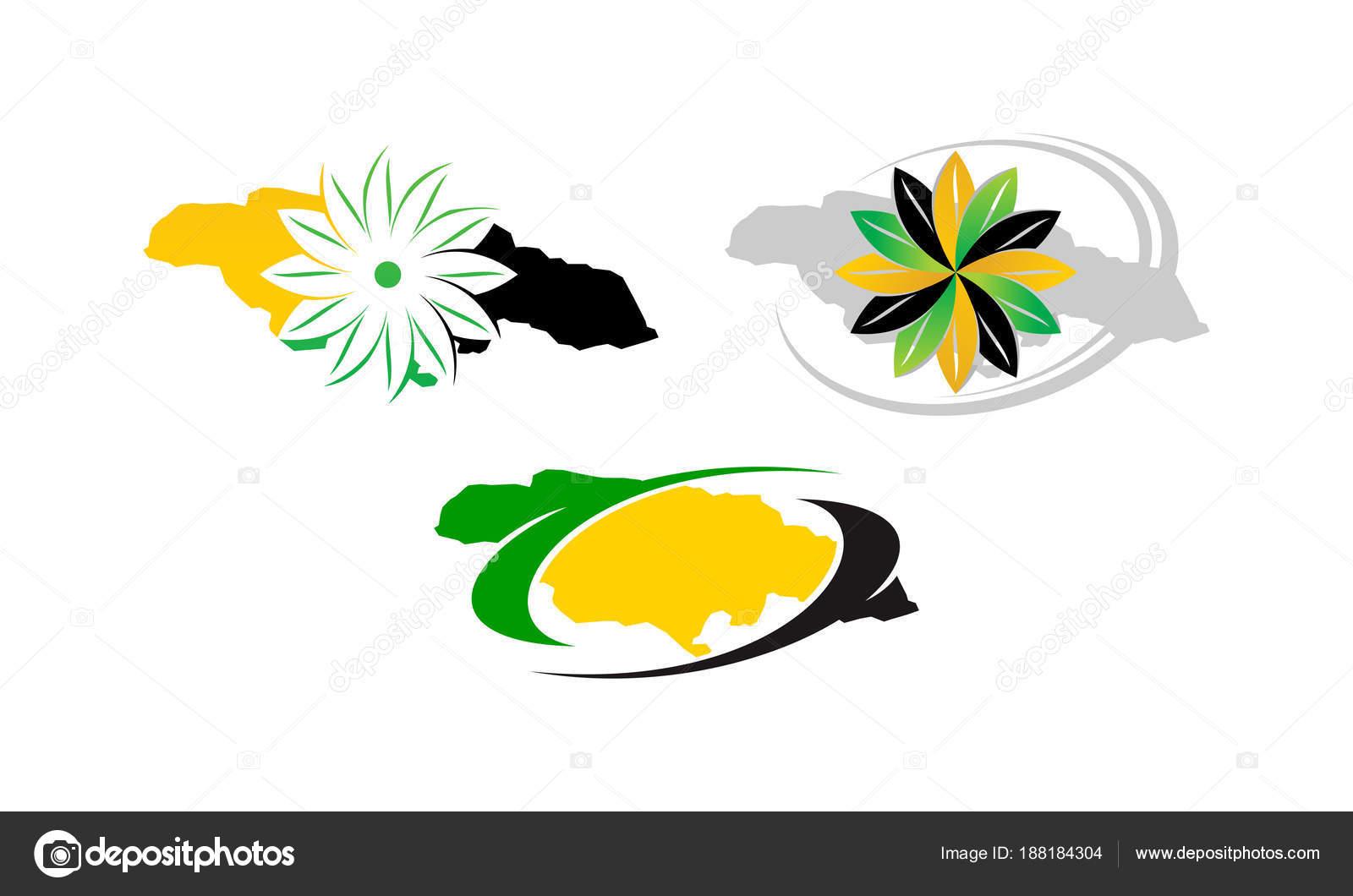 Conjunto de plantillas de flor de Jamaica — Vector de stock ...
