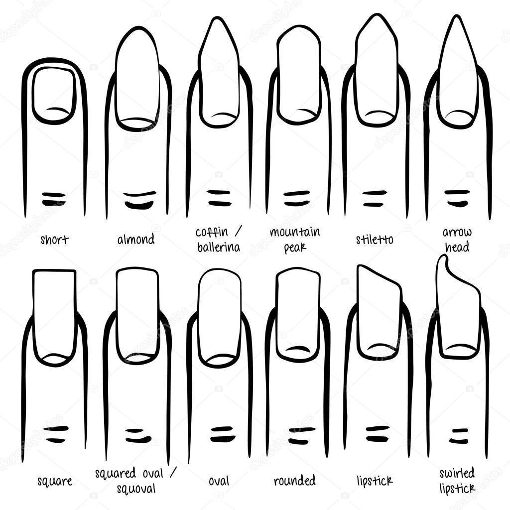 Verschiedenen Nagel Formen — Stockvektor © Lazuin.gmail.com #125698298