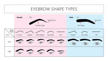 female and male brows