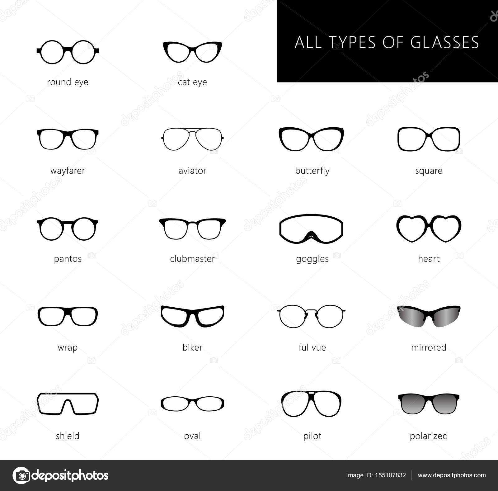 1022280ba7d3ed Tous les types de verres — Image vectorielle Lazuin.gmail.com ...