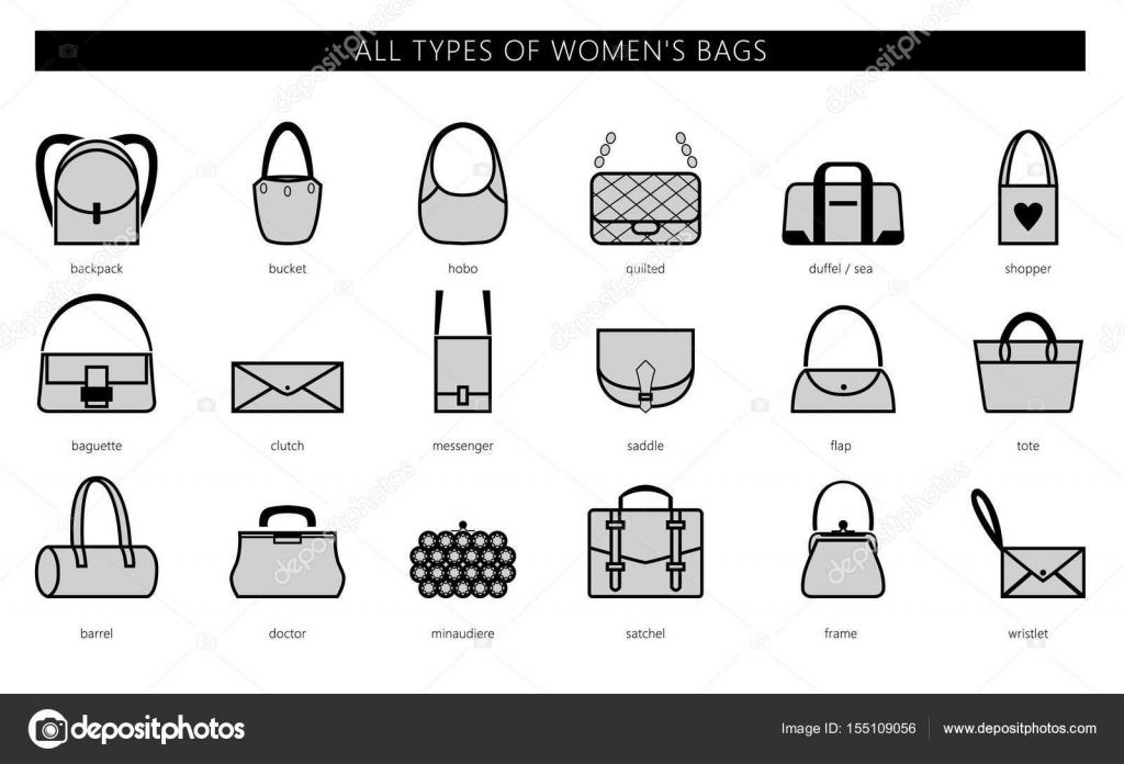 1458c2b83978 Типы женских сумок. Виды женских сумок — Векторное изображение ...