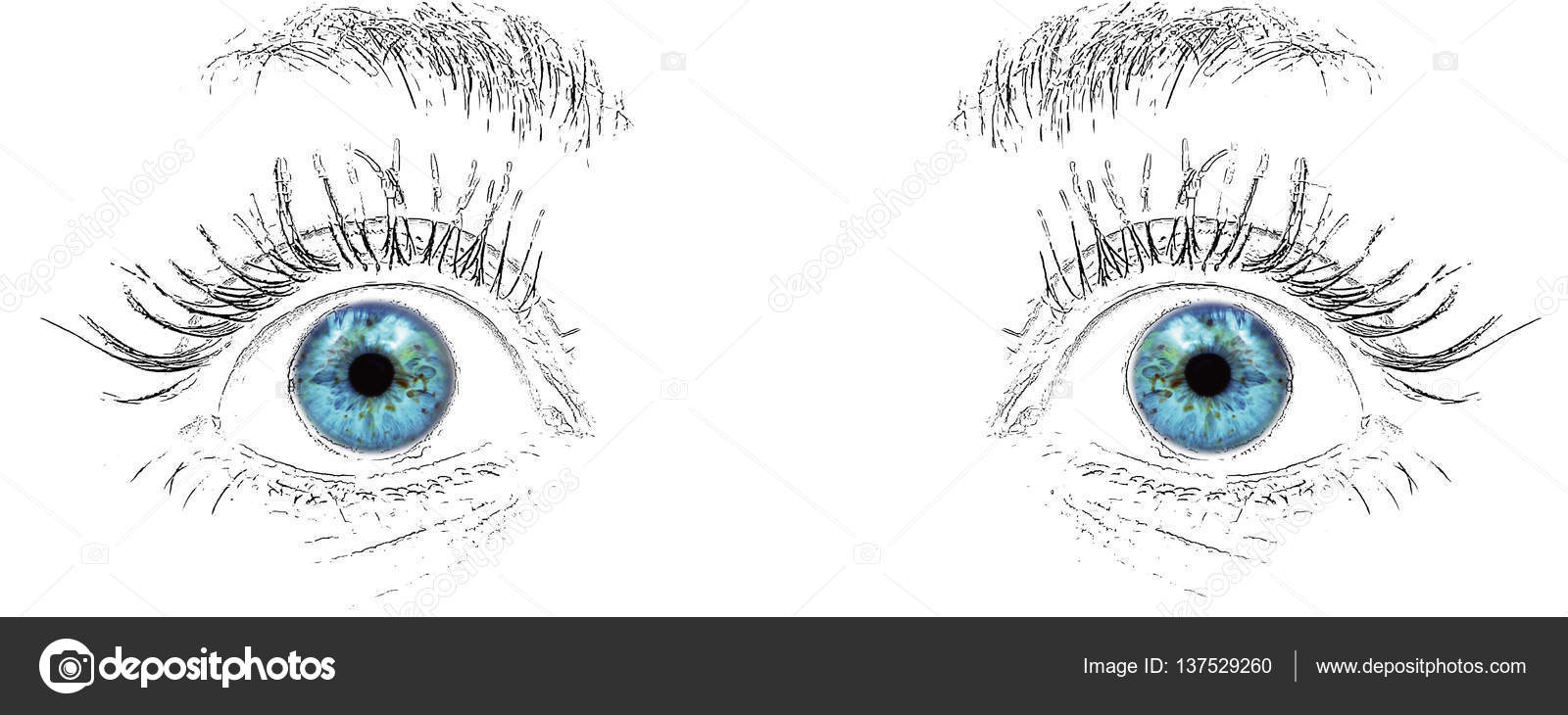 Blue Eyes Look Drawing Stock Photo C Mkarco 137529260