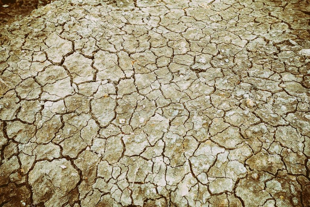dried and cracked ground soil texture