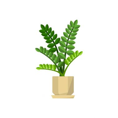 Pot plant in flat style