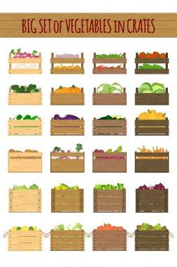 wooden crates with veggies