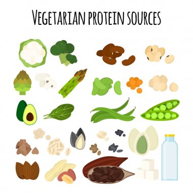 Set of vegan protein food