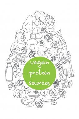 hand drawn vegan protein sources