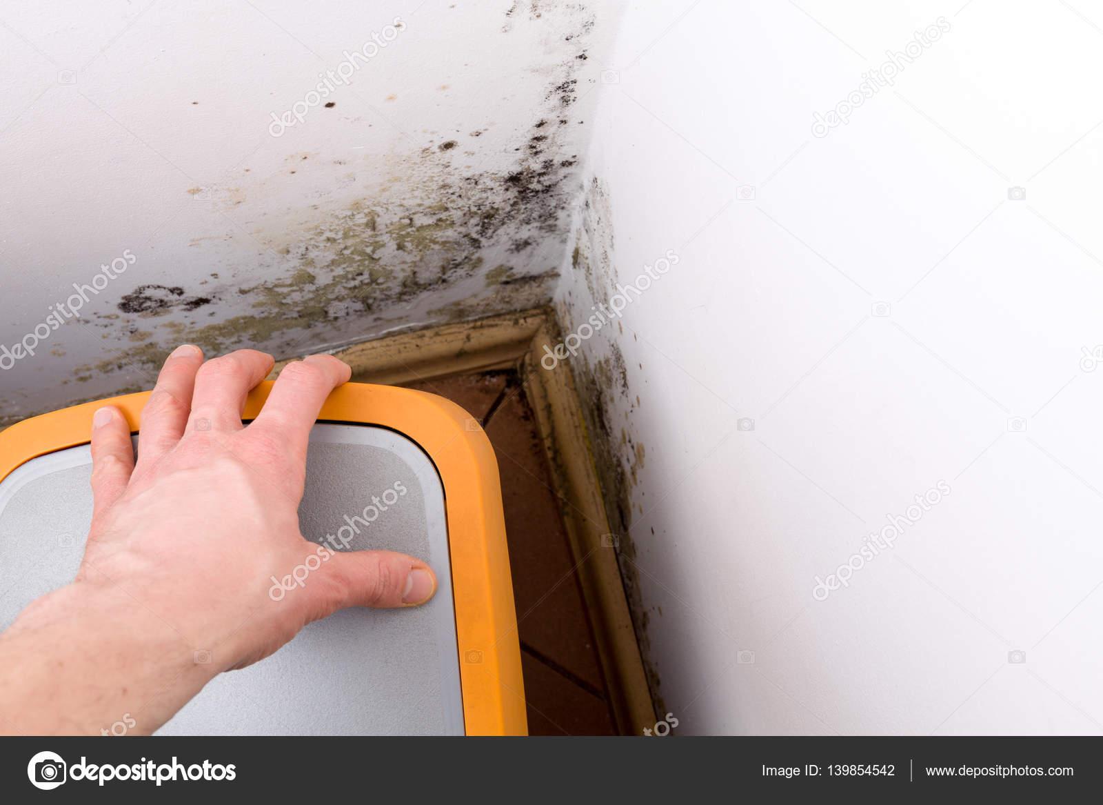problem mit schimmel im haus — stockfoto © cegli.o2.pl #139854542