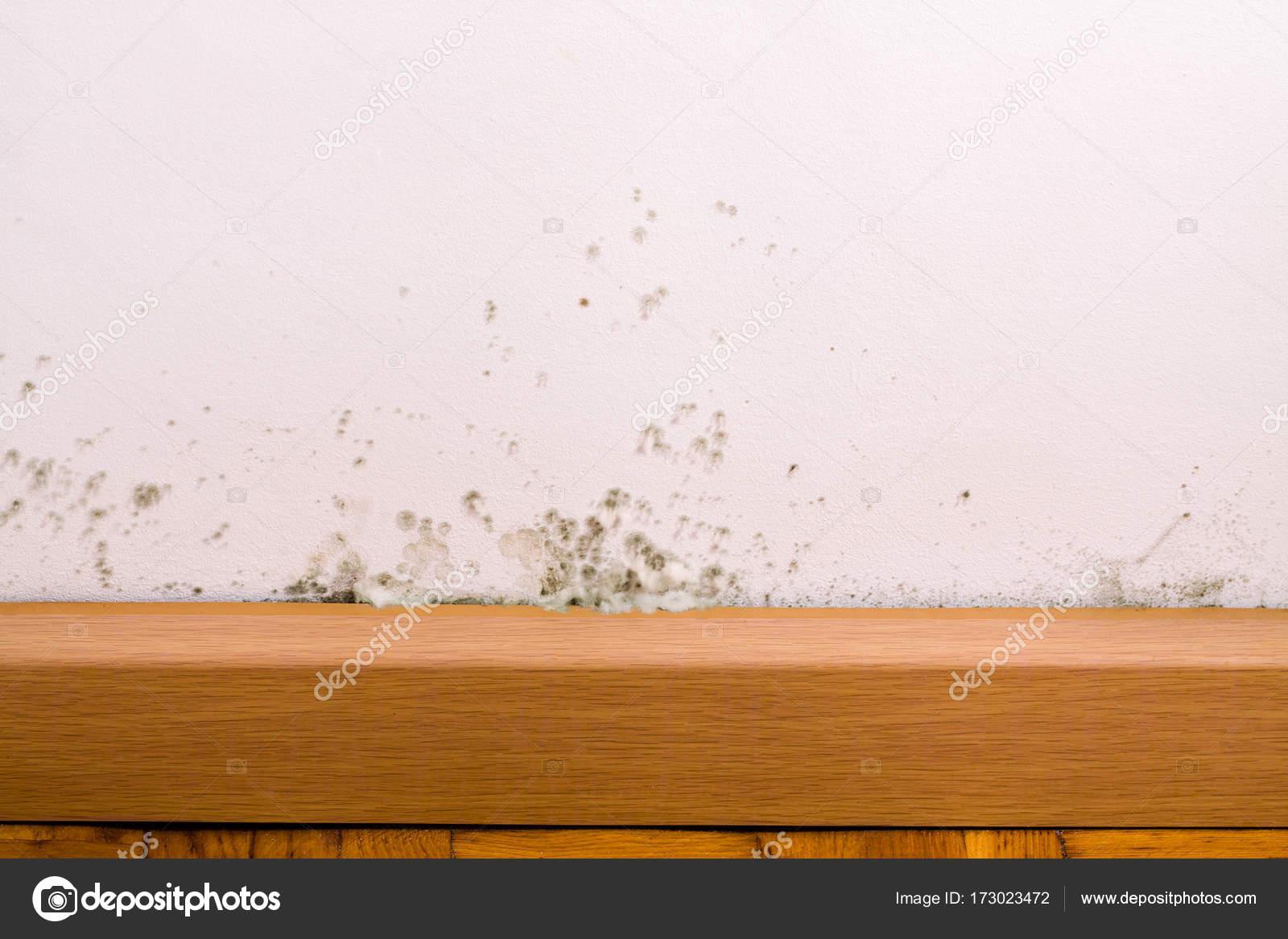 Nasse flecken an der wand finest was tun bei feuchten wnden with nasse flecken an der wand - Feuchte wande was tun ...