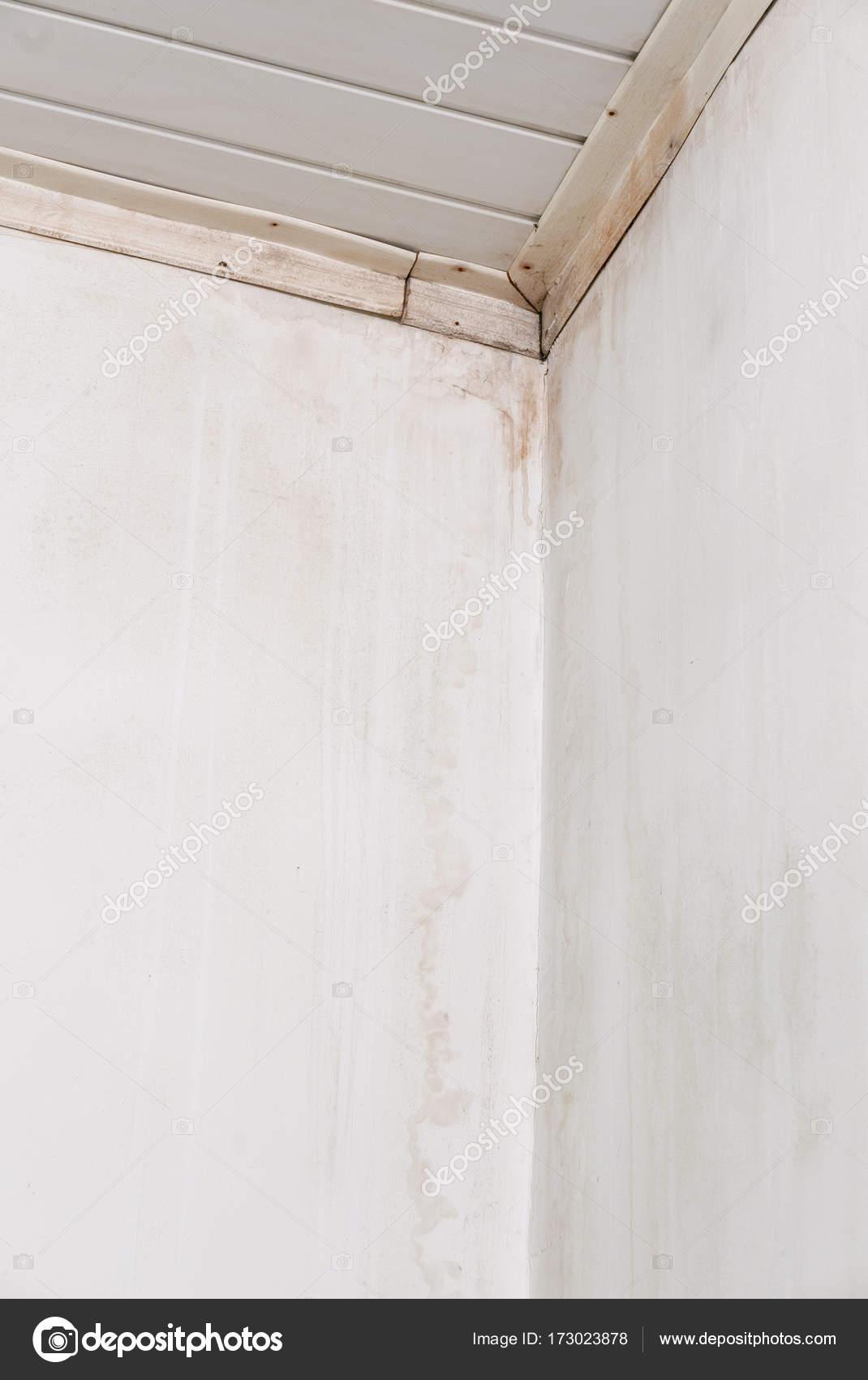 Problem Mit Schimmel Und Feuchte Flecken Zu Hause Stockfoto