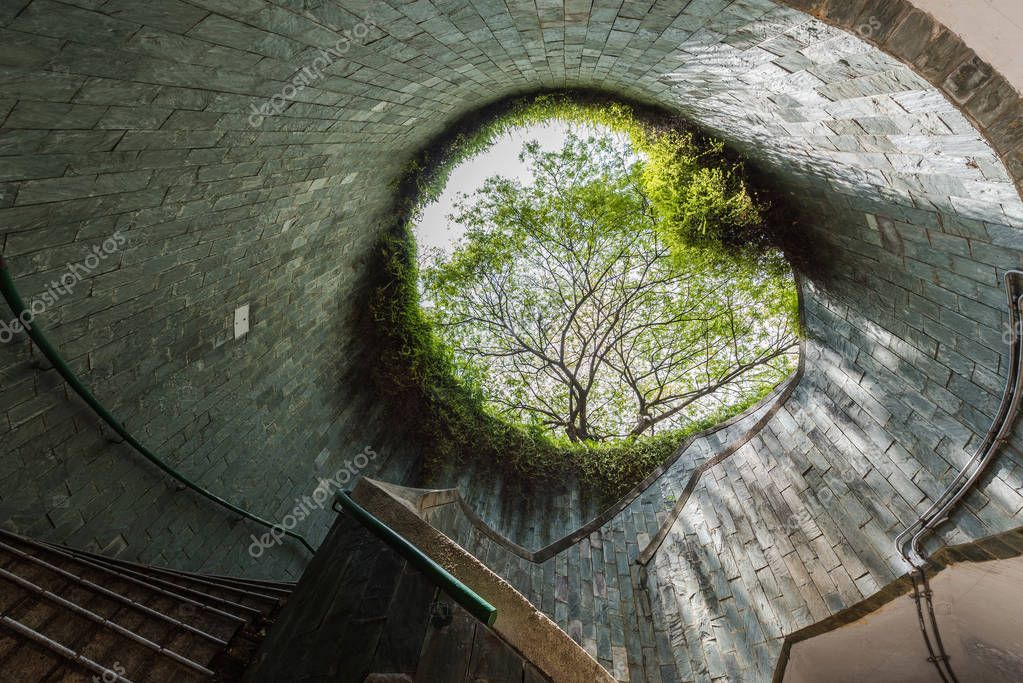 The tree over underground crossing tunnel walkway at Fort Cannin