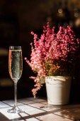 Champagnerglas neben dem Blumentopf auf einem Holztisch platziert. Lage des Weinkellers.