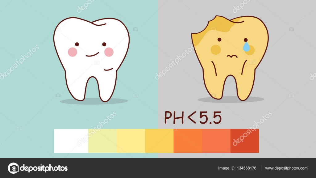 healthy teeth and tooth decay — Stock Vector © etoileark ...