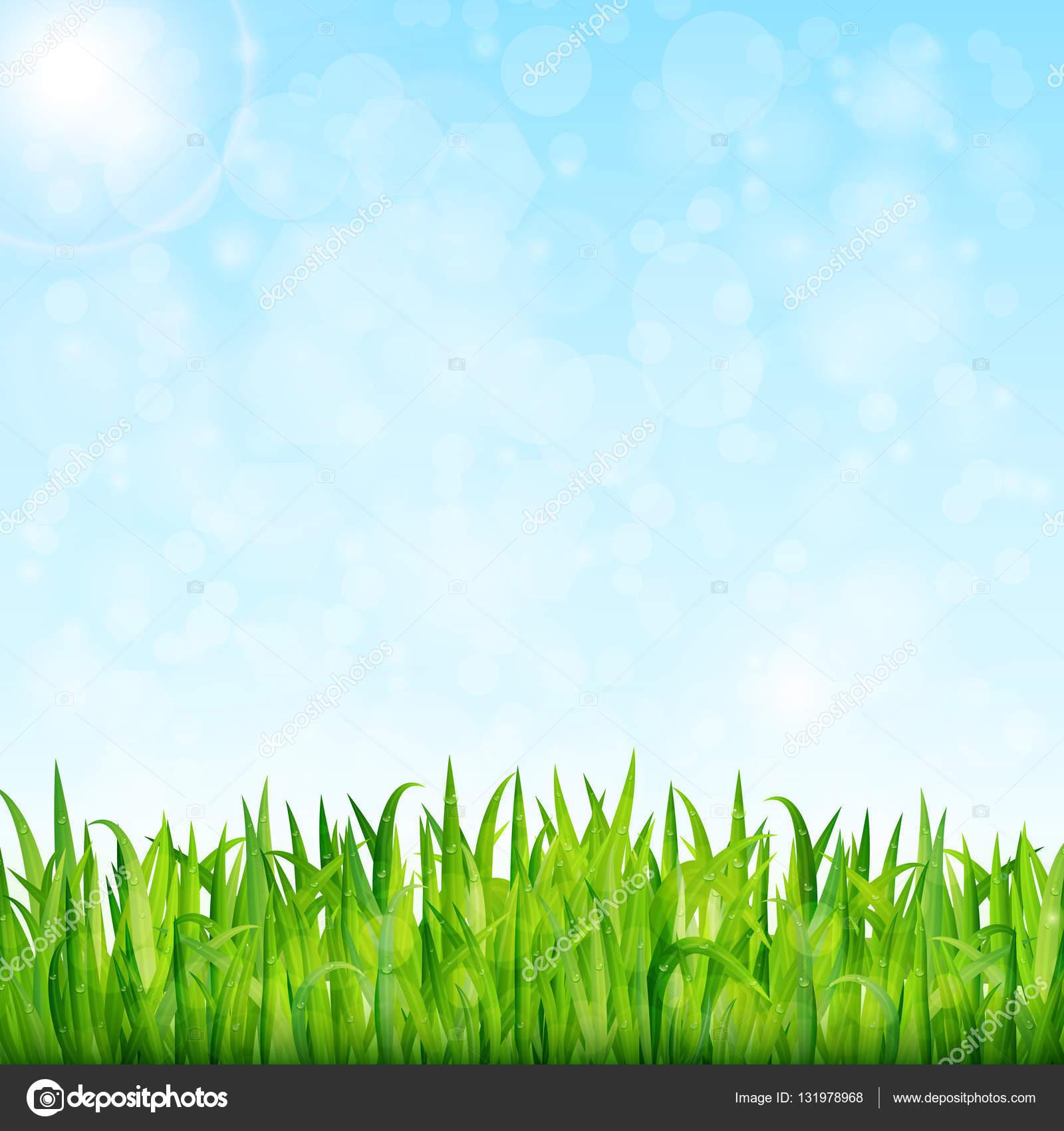 Yeşil çim Ve Mavi Gökyüzü Vektör Doğa Arka Plan Stok Vektör