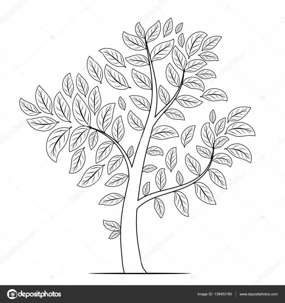 Árbol con hojas silueta sobre fondo blanco. Colorear libro p ...
