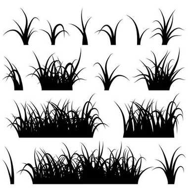 Grass silhouette set isolated on white background vector