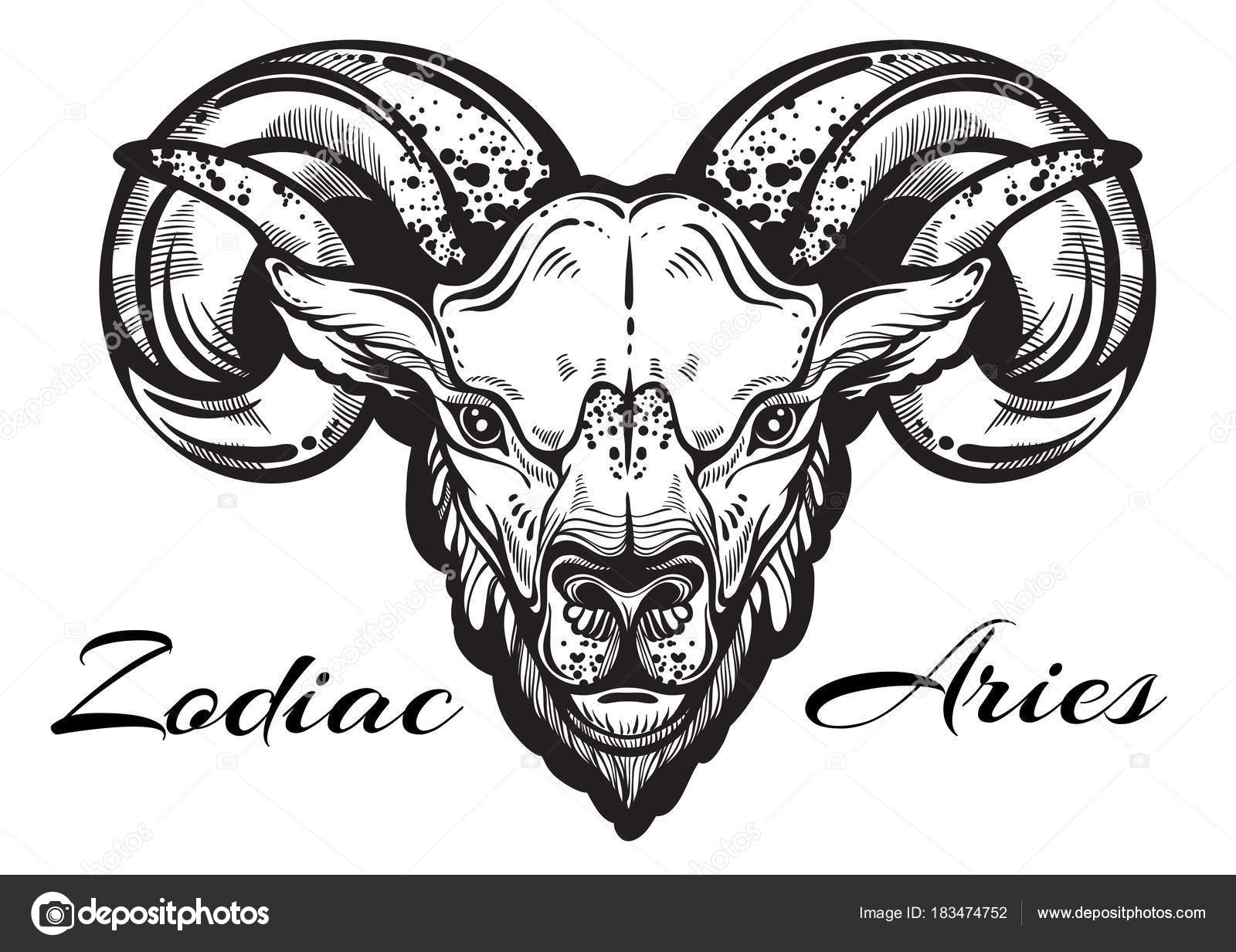 Hand Drawn Beautiful Artwork Of A Ram High Detailed Linear Style