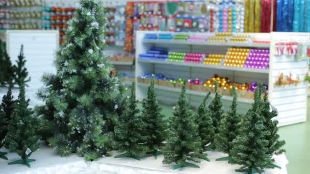 Christmas Trees and decorations at store