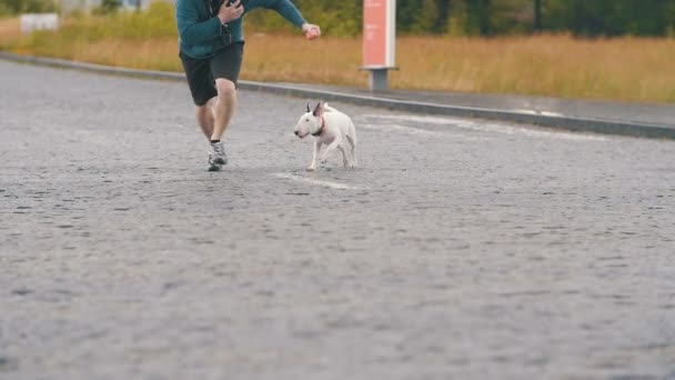 Psa s majitelem