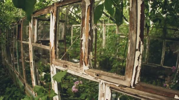 Frame of abandoned old greenhouse