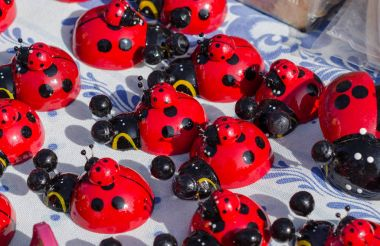 Many ladybugs close up at the fair