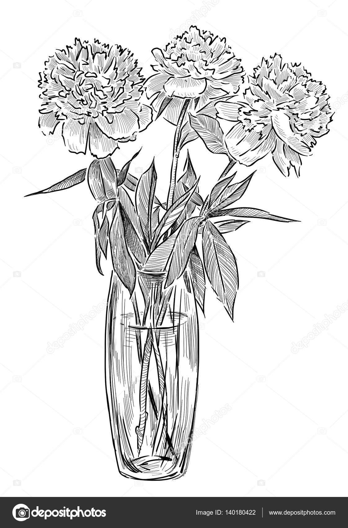 Hand Zeichnung Von Einem Bouquet Von Weißen Pfingstrosen Stockfoto