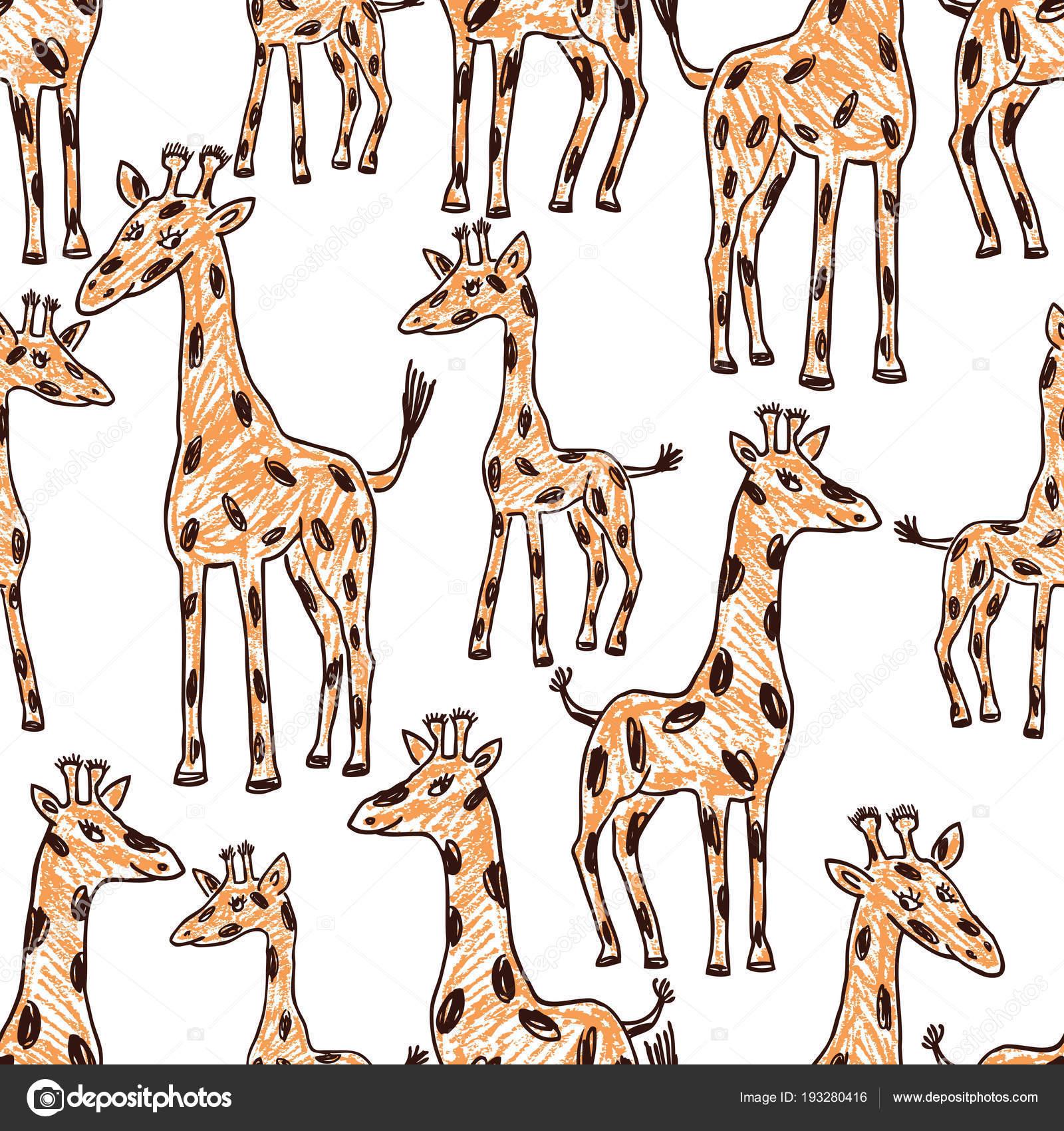 Imágenes: de jirafas dibujadas   Fondo Transparente Las Jirafas ...