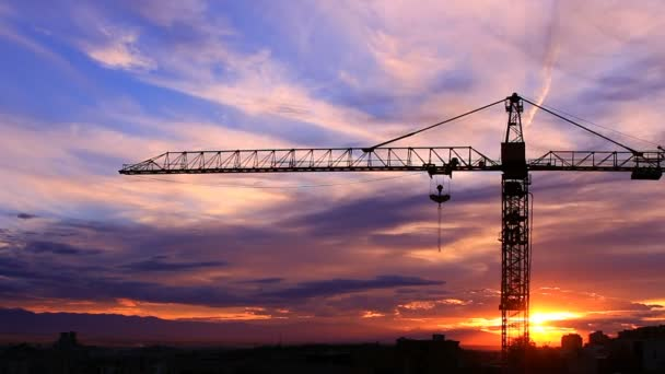 Time lapse of the crane on background of a sunset HD