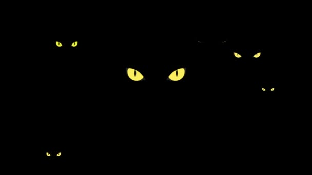 Dangerous yellow wild cat eyes in darkness