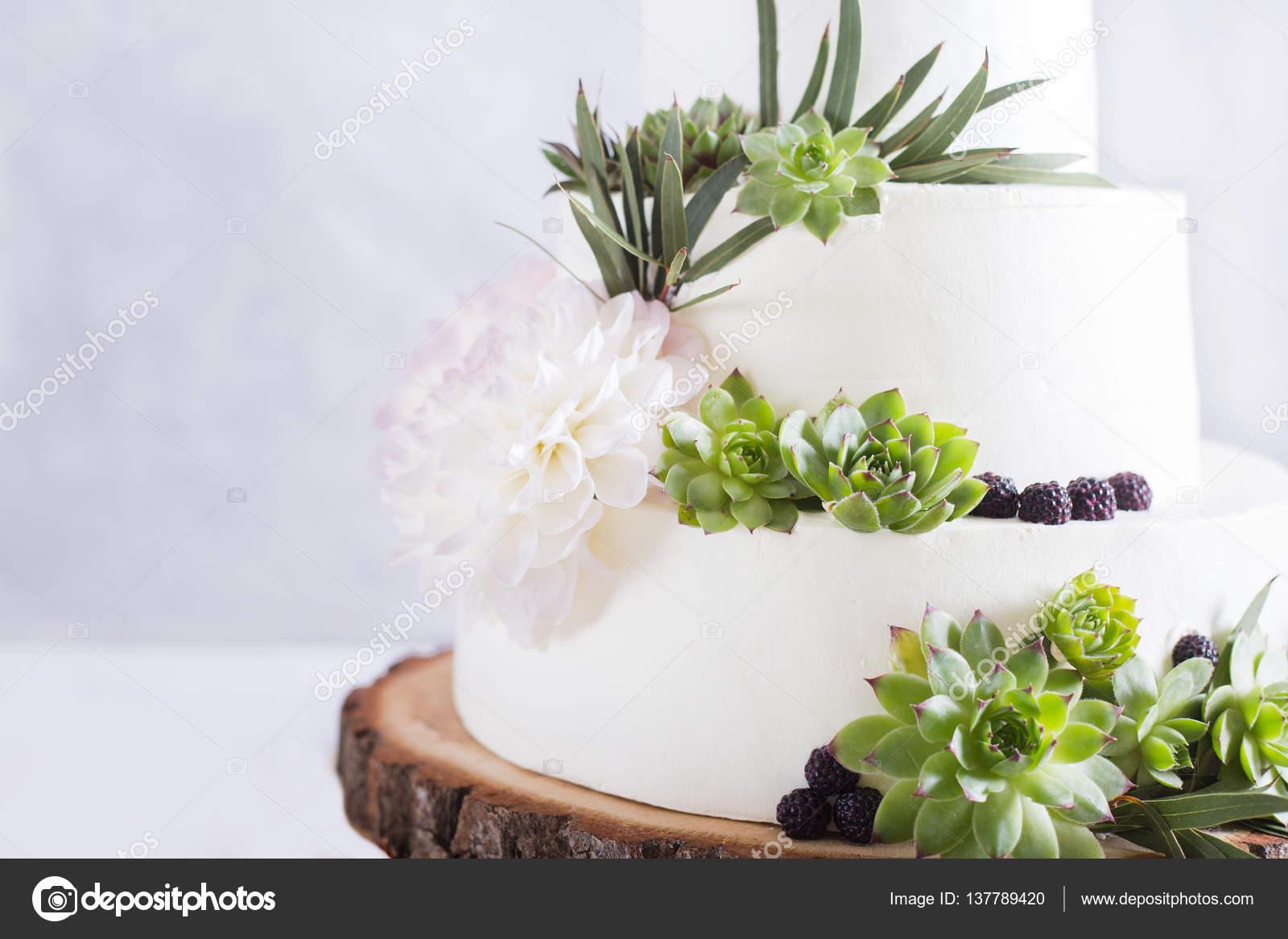 Pasteles De Boda Con Flores: Elegante Pastel De Boda Con Flores Y Plantas Suculentas