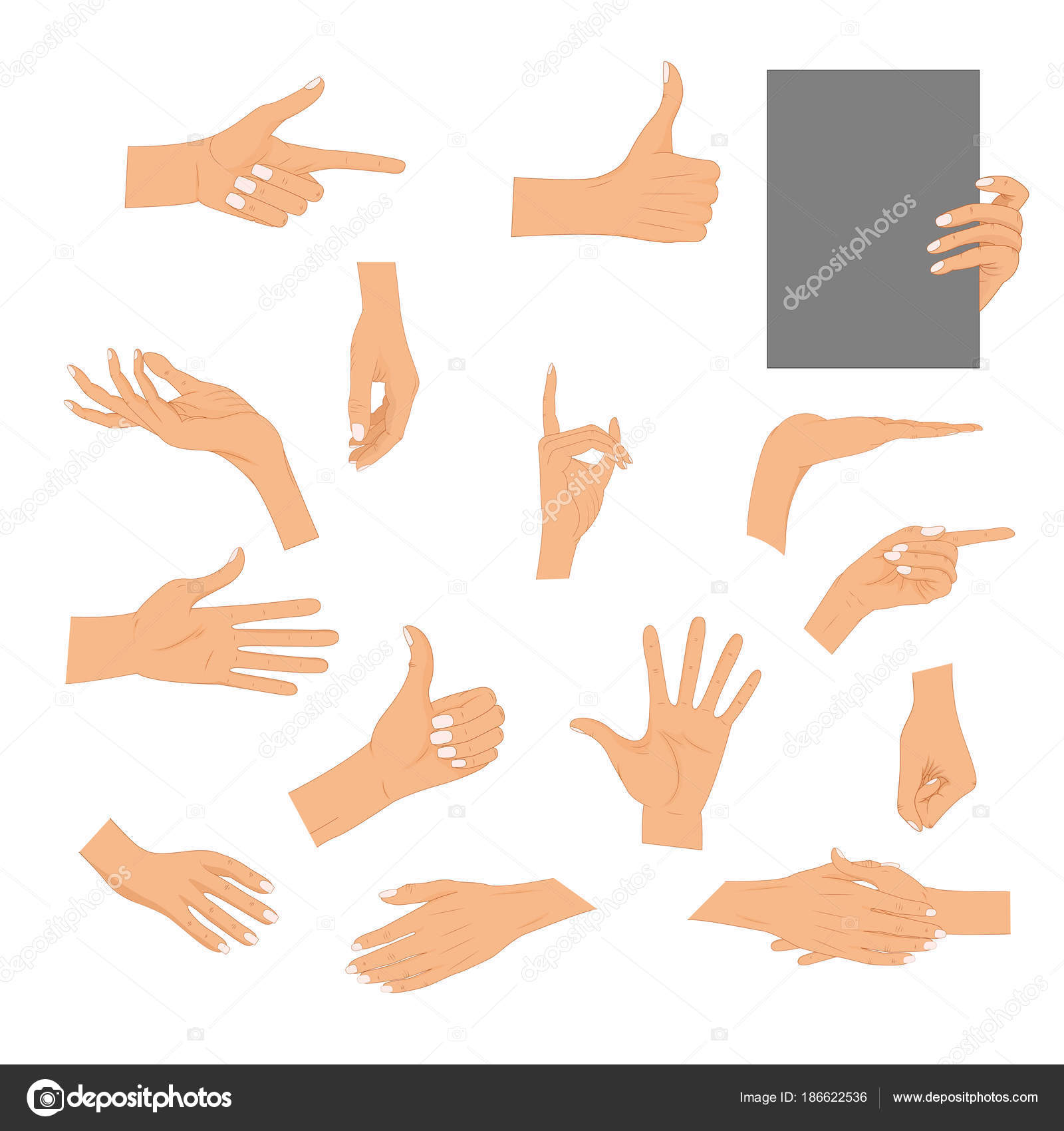 Set Hands In Different Gestures Isolated On White Background