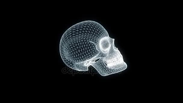 Menschlicher Schädel Wireframe 3D-Hologramm in Bewegung. Schönes 3d Rendering