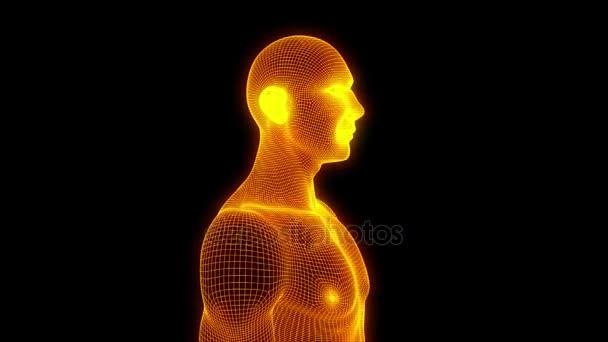 Menschlichen Wireframe-Hologramm in Bewegung. Schönes 3d Rendering